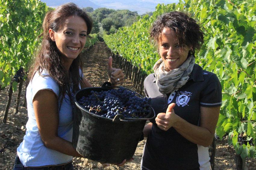 Lucia und Laura Ciacci von der Tenuta di Collosorbo im Weinberg