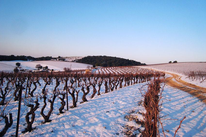 Auch im Süden Frankreichs hält der Winter Einzug.