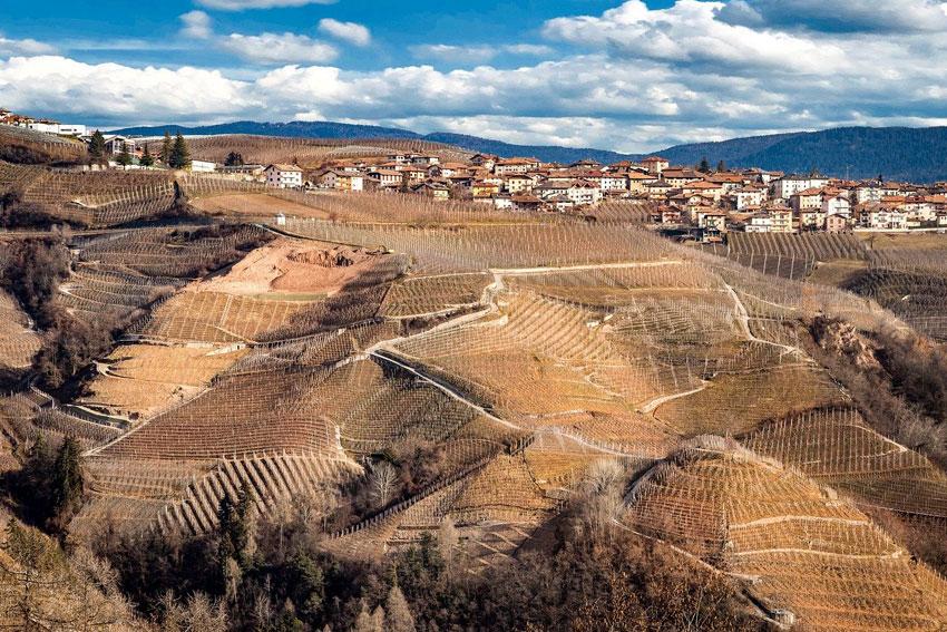 Auch in der kalten Jahreszeit ein herrlicher Anblick: die Weinlagen im Trentino.