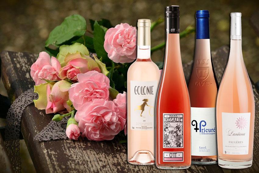 Gottardis Rosé-Empfehlungen