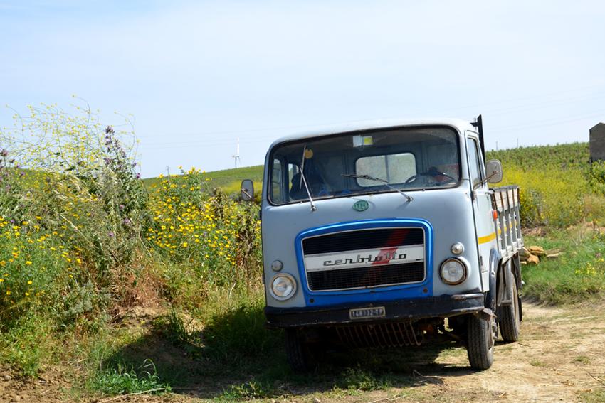 Weinberge Sizilien mit einem kleinen italienischen Lastwagen.