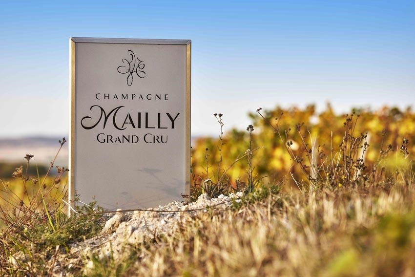 Feld mit Schild von Mailly Champagne